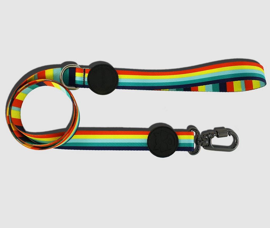 Guia Colors CoolDog
