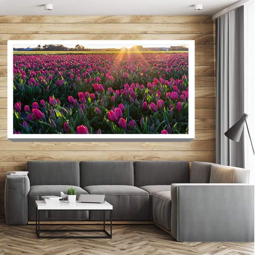 Quadro Canvas Tulipa Rosa