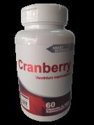 CRANBERRY (VACCINIUM MACROCARPON) 500MG C/60 CAPS