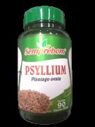 PSYLLIUM (PLANTAGO OVATA) 500MG C/90 CAPS