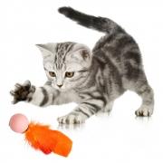 Brinquedo P/ Gato Bolinha Ping Pong Com Pena 10 Unid