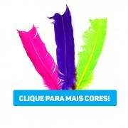 Pena de Pato Ponta Normal 20 a 30 cm  05 unidades