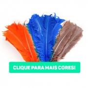 Pena de Pato Ponta Normal 20 a 30 cm 25 Unidades