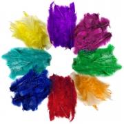Penas Coloridas Para Flechas, Petecas e Artesanato (600 Uni)