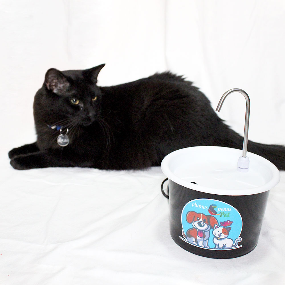 Bebedouro Colorido P/ Gato com 2 Comedouros 3I