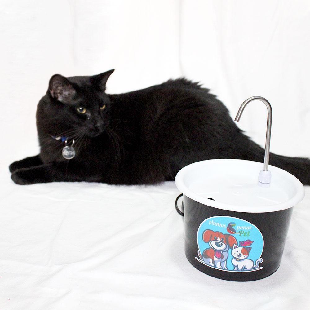Bebedouro Gato Plástico Tipo Fonte + Comedouro 2C