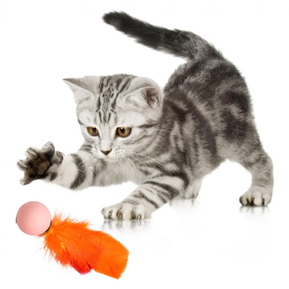 Brinquedo P/ Gato Bolinha Ping Com Pena 12 Unid Chocalho