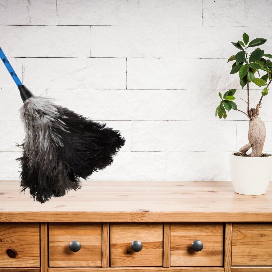 Espanador de Pó Pluma de Avestruz Multiuso - 66 cm