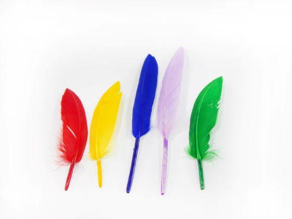 Pena de Pato Pequena 5 a 12 cm 30 unidades