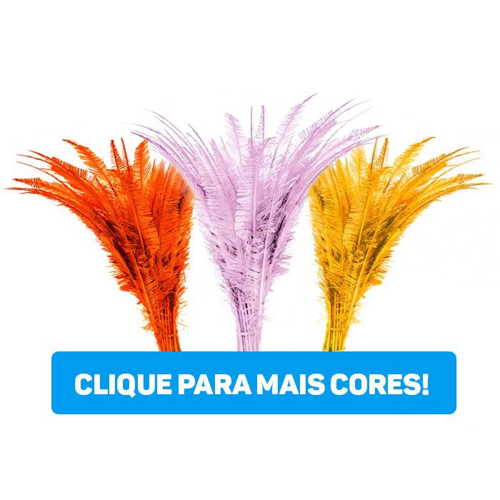 Pluma Aparada P 21 a 30 cm 100 gramas (Apx. 40 Unidades)