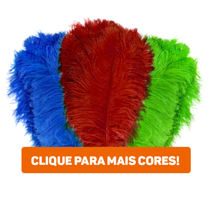 Pluma Chorona G 51 a 60 cm 10 Unidades