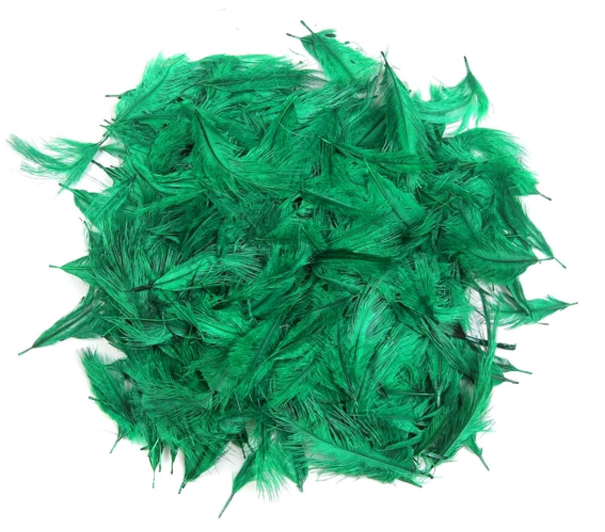 Pluma Confete 5 a 12 cm 10 Unidades