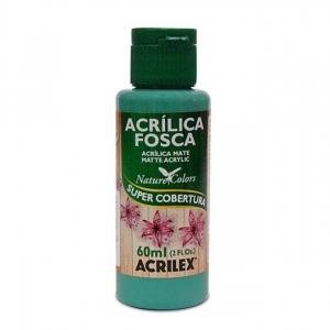 Tinta Acrílica Fosca Acrilex 60Ml - Verde Country