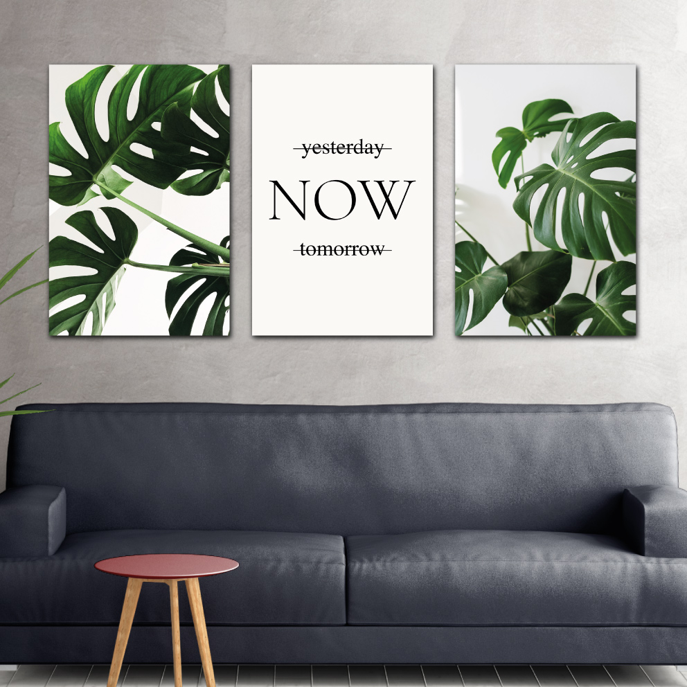 Composição Now - Folhas Verdes
