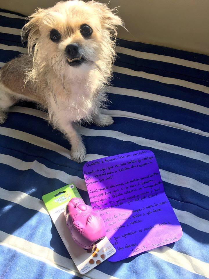 Walter cliente Nubank teve seu cartão mastigado pela sua cachorrinha Belinha