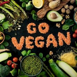 Descubra 7 dicas para a criação de loja de produtos veganos online