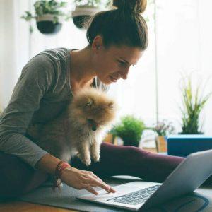 6 dicas essenciais para você criar uma loja virtual para pets