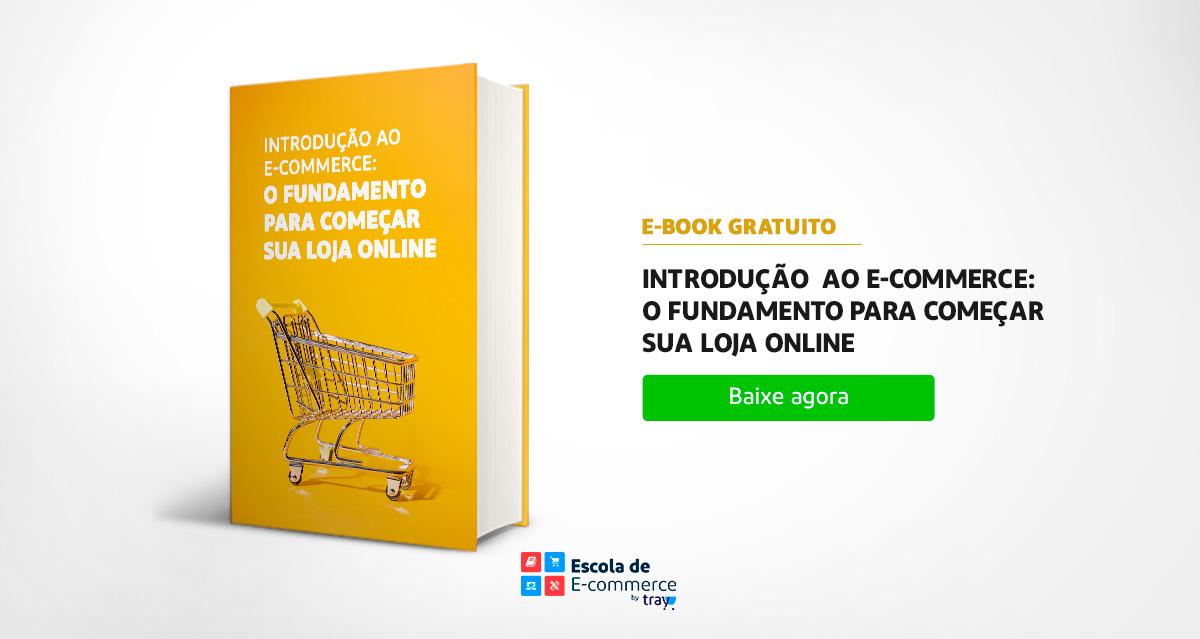 Introdução ao E-commerce: o fundamento para começar sua loja online