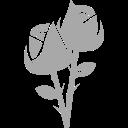 icon flores traycheckout